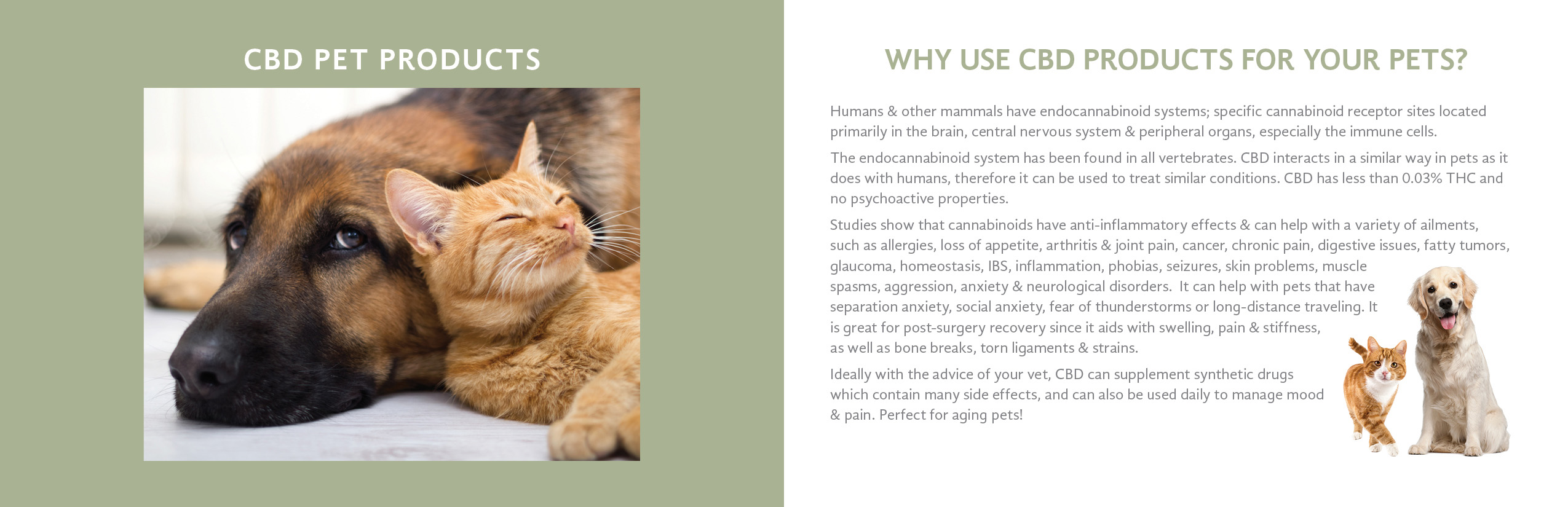 Hemp Cbd Oil for Pets in Charlottetown PEI